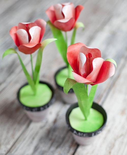 самый красивый букет из роз фото