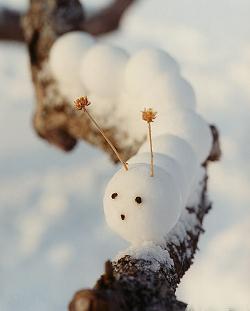 зимние развлечения длядетей
